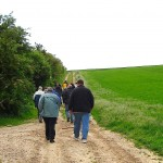 The Old Vitasse Road 2007