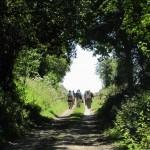 Walking the Arras Battlefields 2012